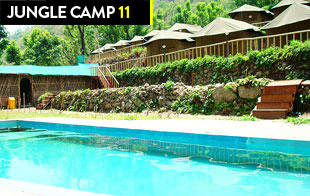 Jungle Camp 11 (Swimming Pool Camp near Tapovan, Laxman Jhula)